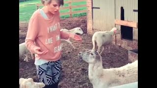 Taylor Swift - Funny Moments 2015