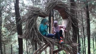 Video wana wisata BUKIT PINUS / HUTAN PINUS / BUKIT HIJAU Wonosalam Jombang Jatim. MP3, 3GP, MP4, WEBM, AVI, FLV Oktober 2018