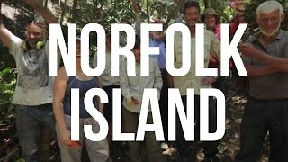 Book now. Only 7 places left. http://smarturl.it/Norfolk_Island Want to travel to to an astounding island, see birds that can't be found ...