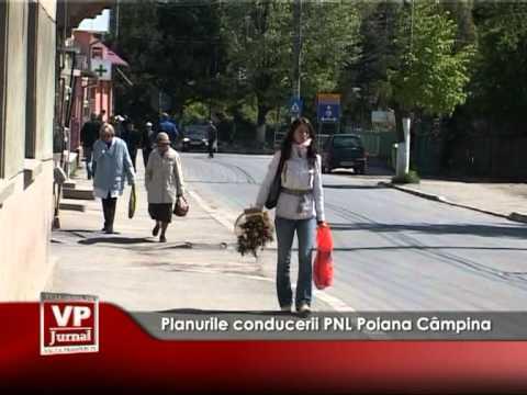 Planurile conducerii PNL Poiana Câmpina