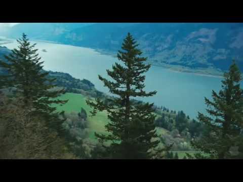 Twilight (HD 1080p)