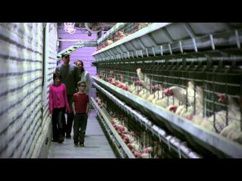 Meet Egg Farmers Alan and Myra.