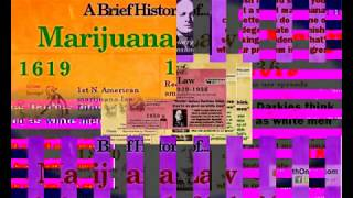 From Under The Influence with Marijuana Man: Cannabis Legalized ... For Dummies! by Pot TV