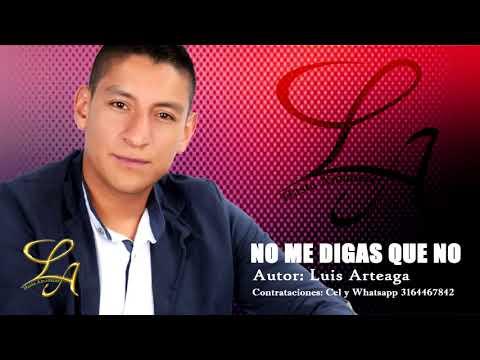 No Me Digas Que No - Luis Arteaga (Audio Video)  #HastaAmanecer