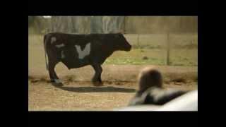 Nonton Under The Dome   The Cow Scene Film Subtitle Indonesia Streaming Movie Download