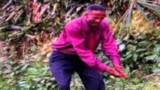 Hinn Ne No Qocoo (kafa Music)