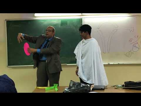 UGS Anatomy Lecture #11 - Dr Ahmed Salman