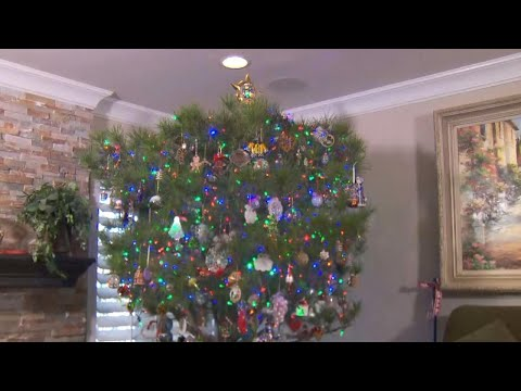 Family Has Been Using the Same Real Christmas Tree for 34 Years