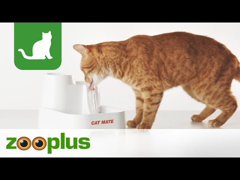 cat mate trinkbrunnen g nstig bei zooplus. Black Bedroom Furniture Sets. Home Design Ideas