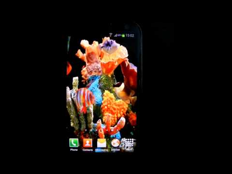 Video of Aquarium Live Wallpaper HD
