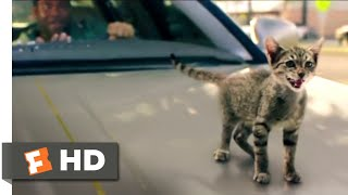 Nonton Keanu  2017    Kitty Car Chase Scene  9 10    Movieclips Film Subtitle Indonesia Streaming Movie Download