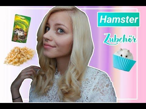 Hamster Zubehör - Was sollte man nicht benutzen?