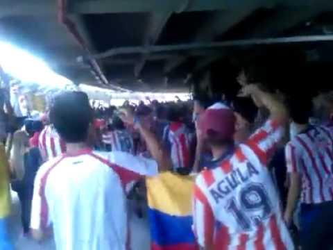 la hinchada de junior  lbk los dueños de la fiesta - Frente Rojiblanco Sur - Junior de Barranquilla