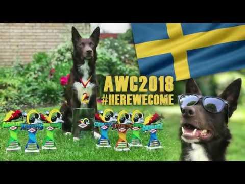 °German AWC Tryouts Winner° 2018 - Max Sprinz & Bäxx (видео)