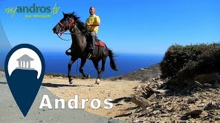 Andros | Horse Back Riding in Andros