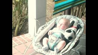 10 Week Old Baby And 8 Week Old Pitbull Puppy Have A Fasinating Relationship