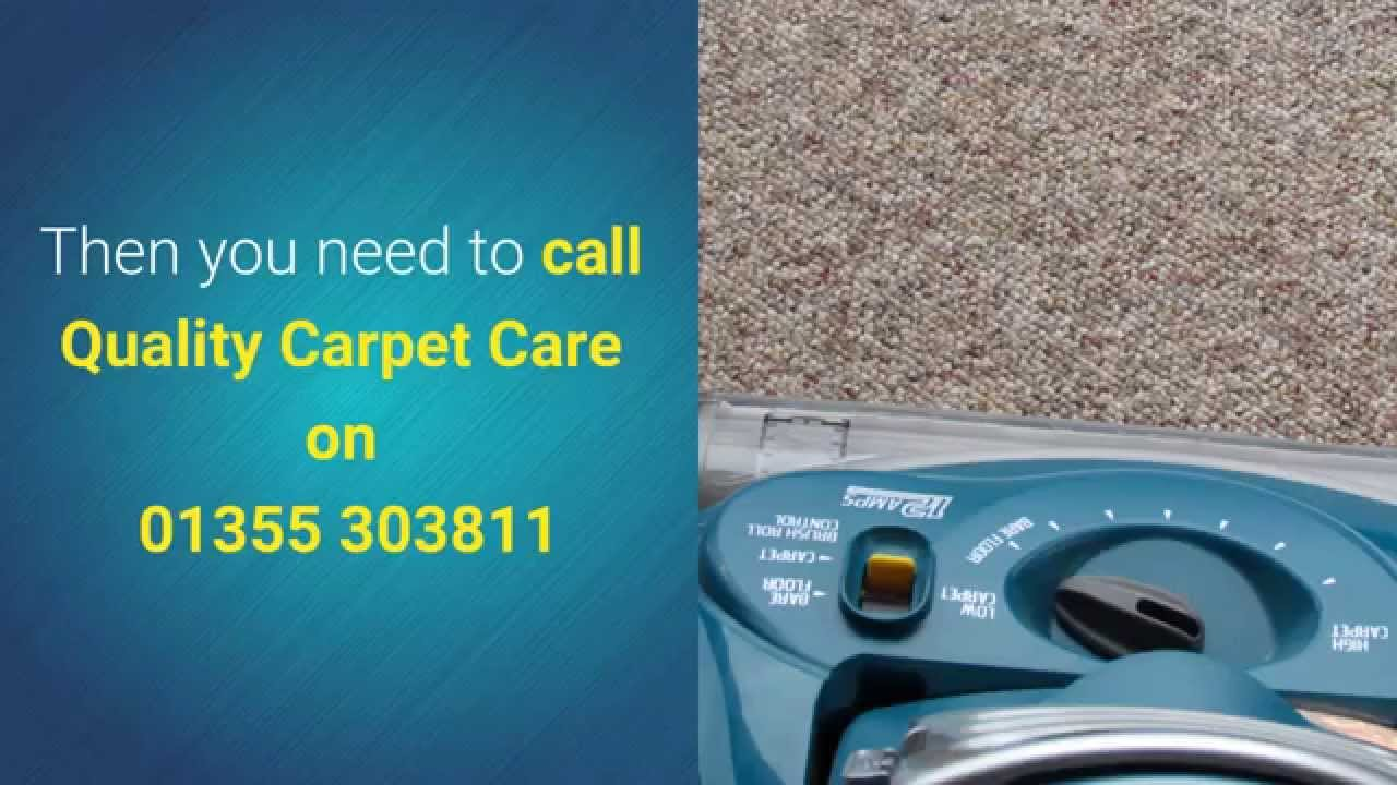 Always choose a carpet cleaner with a proven record