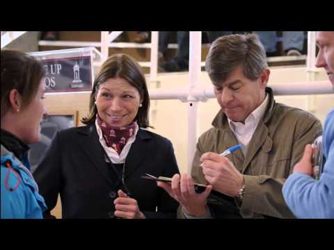 Tattersalls Craven Breeze Up Sale Day 2 Video Review 2016