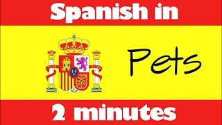 Do you want to learn Spanish? Practise listening skills? Learn some new words or brush up? Here's Spanish in 2 Minutes! This video discusses which pets you h...