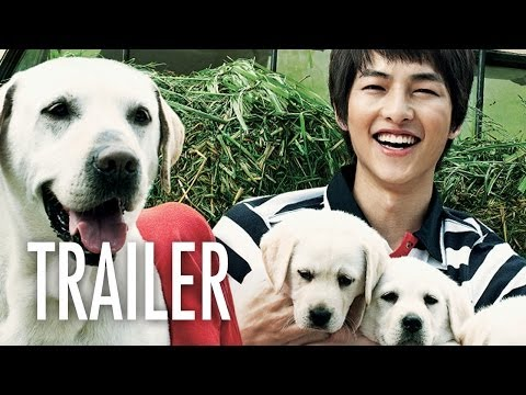 Hearty Paws 2 - OFFICIAL TRAILER - Song Joong-ki & Puppies!