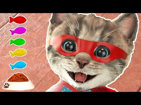 Little Kitten Adventures - Play Fun Pet Friends Costume Dress-Up Party Cartoon Kids Games