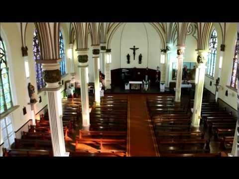 Visão panorâmica da Igreja Matriz de São Lui...