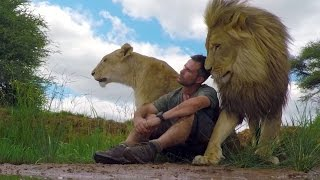 Download Youtube: An Unbreakable Bond | The Lion Whisperer