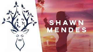 Video Shawn Mendes - Fallin' All In You MP3, 3GP, MP4, WEBM, AVI, FLV Mei 2018
