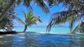 Video Einschlafmusik - Flöte, Meer und die Vögel - Entspannungsmusik MP3, 3GP, MP4, WEBM, AVI, FLV Maret 2018