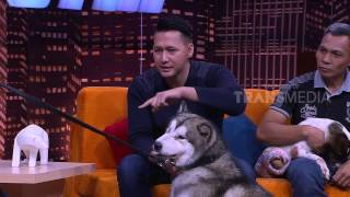 Video HITAM PUTIH - ANIMAL DEFENDER (7/4/17) 4-3 MP3, 3GP, MP4, WEBM, AVI, FLV Juli 2018