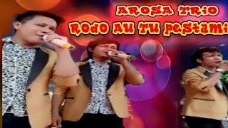 Download Lagu Cover Arosa Trio   Suara Sikriting boleh juga tuh Mp3