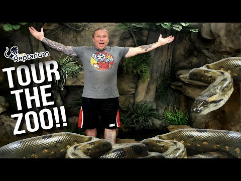 Reptile Zoo Full Tour Cage by Cage! | BRIAN BARCZYK