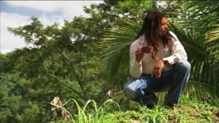 Marley Coffee Billiards YouTube video