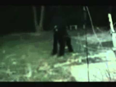 Assombrações e aparições capturadas em vídeo