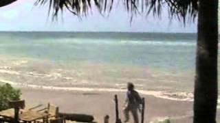 Nik's Garden Koh Lanta 2004 Tsunami