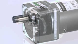 KII - KIIS Serisi standart asenkron motor