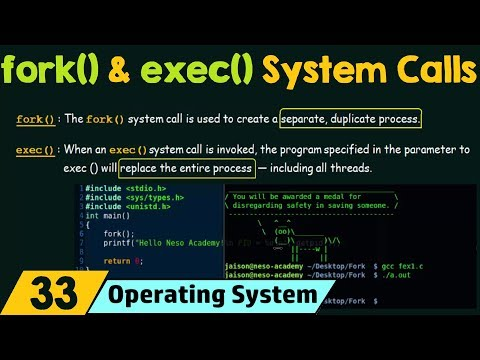 fork() and exec() System Calls