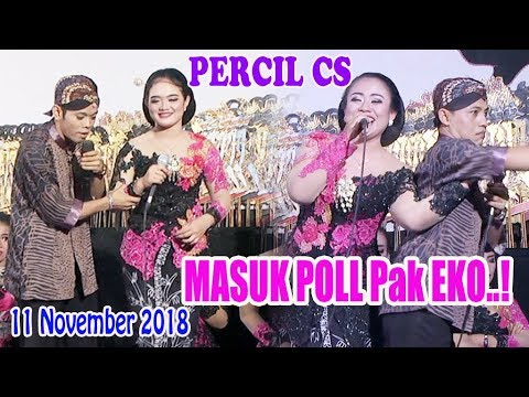 #PERCIL CS -  Goro Goro -11 November 2018
