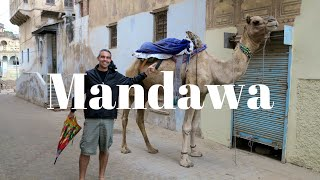 Mandawa India  city photo : Mandawa - India #2