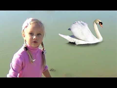 ВЛОГ Алиса гуляет на улице Кормит КРОЛИКОВ ! Что покупает Алиса в магазине (видео)