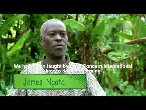 Celebrating the Kenyan Farmer