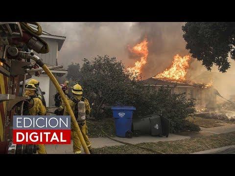 Incendios forestales en Estados Unidos calcinan todo a su paso