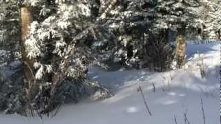 Nonton Maine Bald Mountain 2013 002 Mov Film Subtitle Indonesia Streaming Movie Download