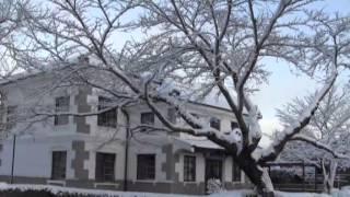 寒波襲来「小弓の庄」雪景色