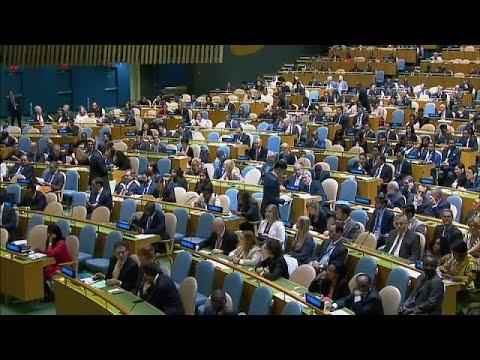 Deutschland wurde in den UN-Sicherheitsrat gewählt