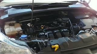 2014 Ford Focus rough engine / misfire