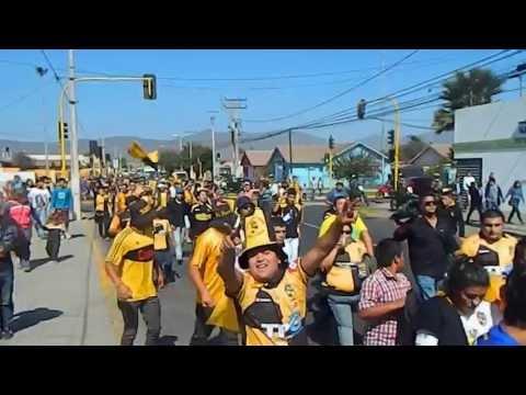 Coquimbanos camino al estadio - Al Hueso Pirata - Coquimbo Unido