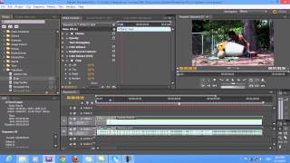 Premiere Pro Cs5.5 Tutorials -การเเต่งสี + การใส่ Crop
