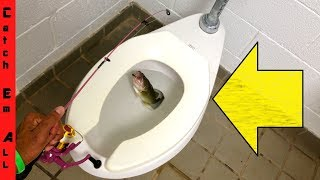 FISHING in TOILET!