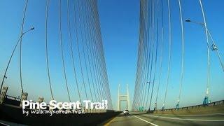 Taean-gun South Korea  city photos gallery : trailer2_Walking Korean Trail_Pine Scent Trail(태안 둘레길_솔향기길 1코스)